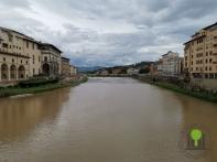 Blick auf den Fluss Arno 2