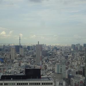 Aussicht auf Tokio